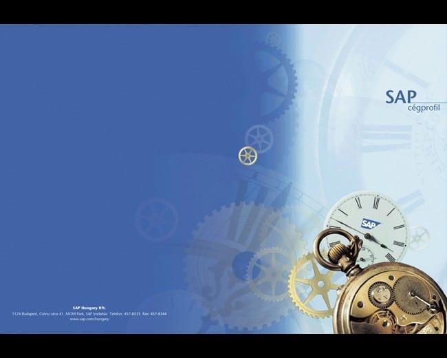 Grafikai tervezés sürgősen – SAP