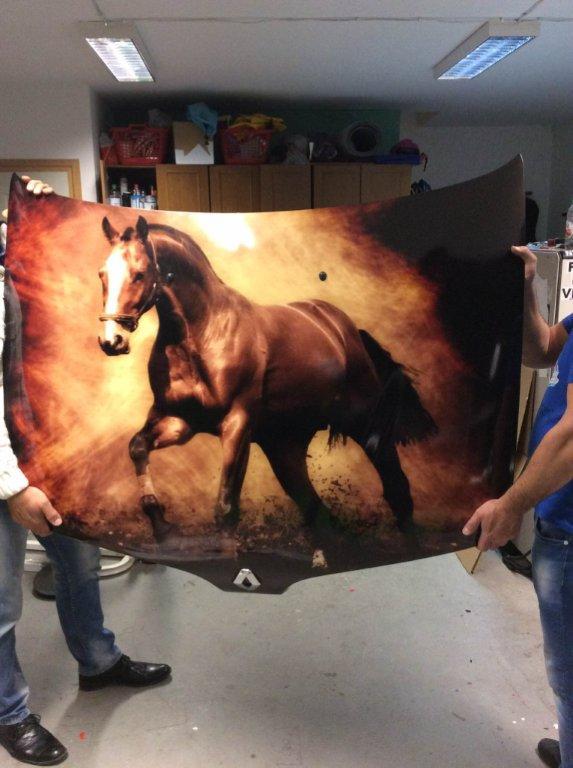 Fali dekoráció nyomtatás festmény nyomtatás sürgősen